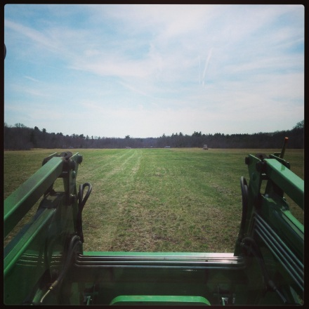 rolling the grass
